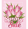 pink tulips lettering spring sale pink background vector image