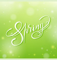 spring lettering on a blur green vector image vector image