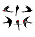 swallow silhouettes vector image vector image