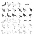 types of birds monochrom icons in set collection vector image vector image