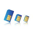 Mobile phone sim card set vector image