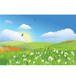 colorfull meadow flower and grass blue sky vector image