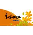 autumn big sale banner horizontal flat style vector image