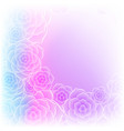 beautiful purple pink rose flower background vector image vector image