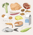 best protein food icons vector image