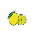 lemon fruit hand drawn clipart icon vector image