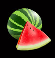 realistic ripe watermelon on black background vector image vector image