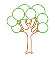 tree with round shapes branches trunk vector image