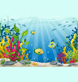 underwater landscape with fish and stones vector image vector image