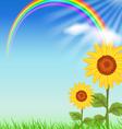 sunflowers vector image