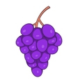 Bunch of wine grapes icon cartoon style vector image vector image