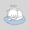 cute cat character white kitten is sleeping vector image