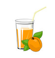 glass with apricot juice vector image