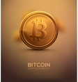 Gold Bitcoin vector image