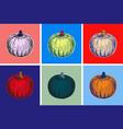 halloween pumpkin hand drawing vector image vector image