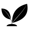 Sprout icon simple style vector image vector image