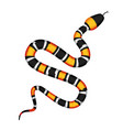 3d of coral snake or micrurus vector image