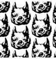 pattern with hand drawn chihuahua vector image