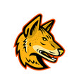 arabian wolf head mascot vector image vector image