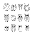 Cartoon owls and owlets vector image vector image