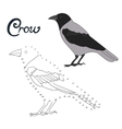 Educational game connect dots to draw crow bird vector image vector image
