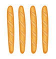french baguette bread fresh vector image