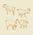 goats set vector image