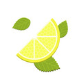 mint and lemon vector image