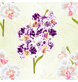 seamless texture branch orchids phalaenopsis vector image vector image