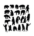wild bear activity silhouettes vector image vector image