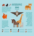 zoo animals infographic vector image vector image
