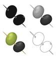 black and green olives on skewersolives single vector image vector image