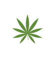 canabis marijuana sign symbol vector image