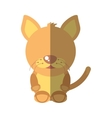 cat mascot cartoon isolated icon vector image vector image