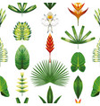 seamless symmetric tropical flowers and leaves vector image vector image