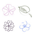 set of flower outlines vector image
