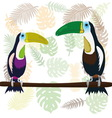 A couple of toucans vector image vector image