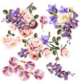beautiful collection of rose flowers vector image vector image