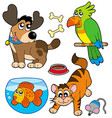 cartoon pets collection vector image