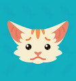 cat emotional head of cute vector image vector image