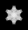 isolated painted snowflakes vector image vector image