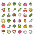 vegetable icon set 22 filled outline icon vector image vector image