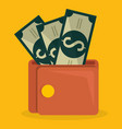 wallet with bills dollars vector image