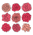 9 decorative roses vector image vector image