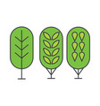 birch tree line icon concept birch tree flat vector image