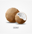 colorful sweet natural coconut fruit concept vector image vector image