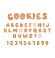 cookies alphabet christmas or new year vector image