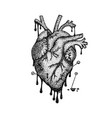 dotwork heart with blood vector image vector image