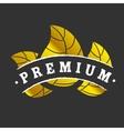 Golden premium logotype vector image vector image