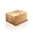 parcel box isolated vector image vector image